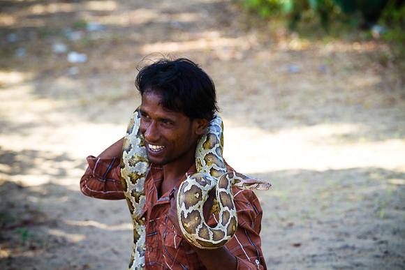 Snake Charmers in Sri Lanka (2/6)
